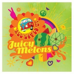 Arôme Juicy Melon par Big Mouth